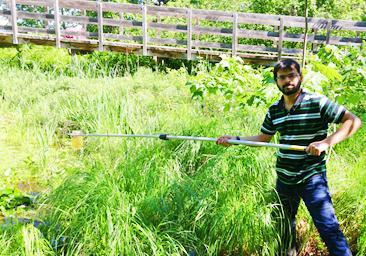 Dr. Patrik Kumar collects algal bloom samples